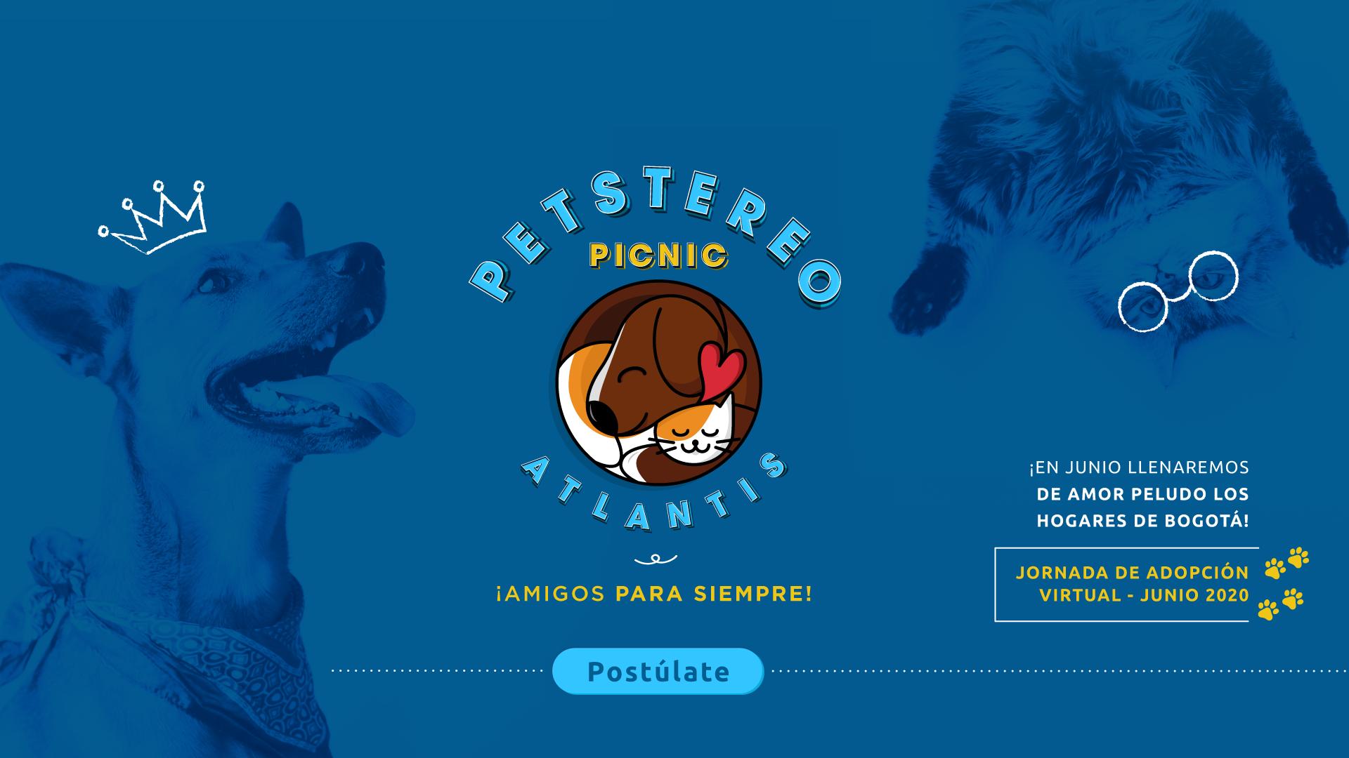 Banner-pagina-web-Pet